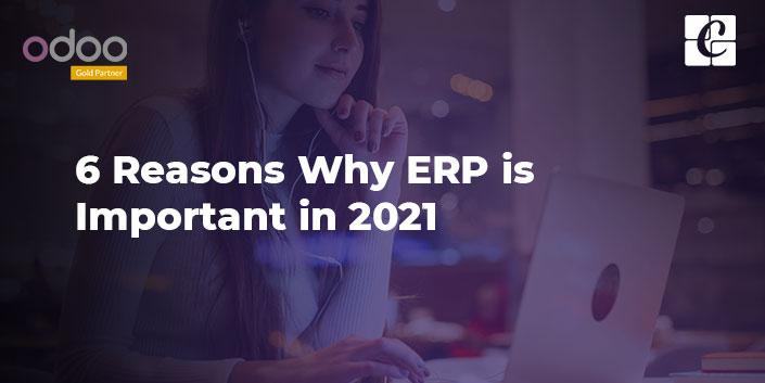 6-reasons-why-erp-is-important-in-2021.jpg