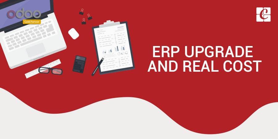 ERP-upgrade-and-True-Cost.jpg