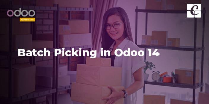 batch-picking-in-odoo-14.jpg