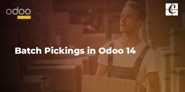 batch-pickings-in-odoo-14.jpg
