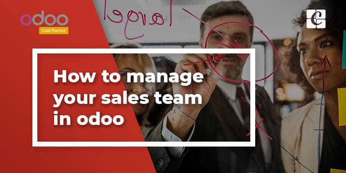 how-to-manage-your-sales-team-in-odoo.jpg