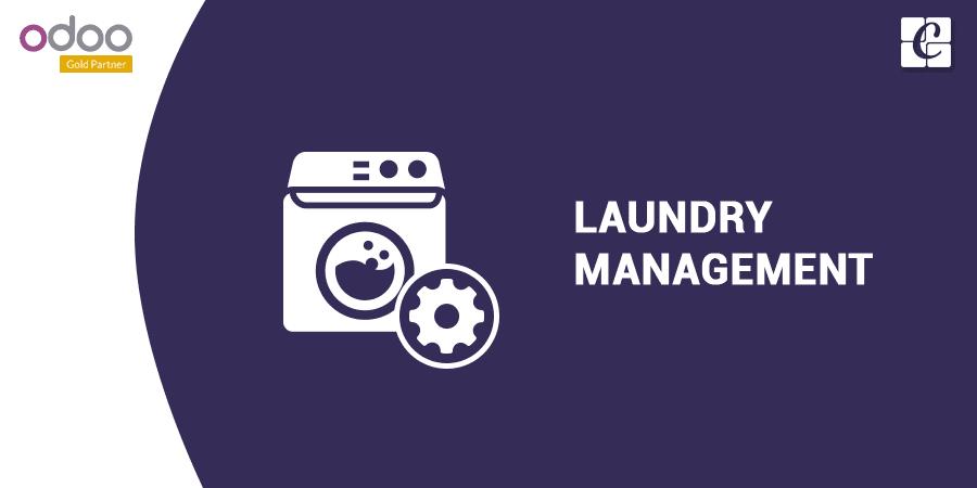laundry-service-management.png