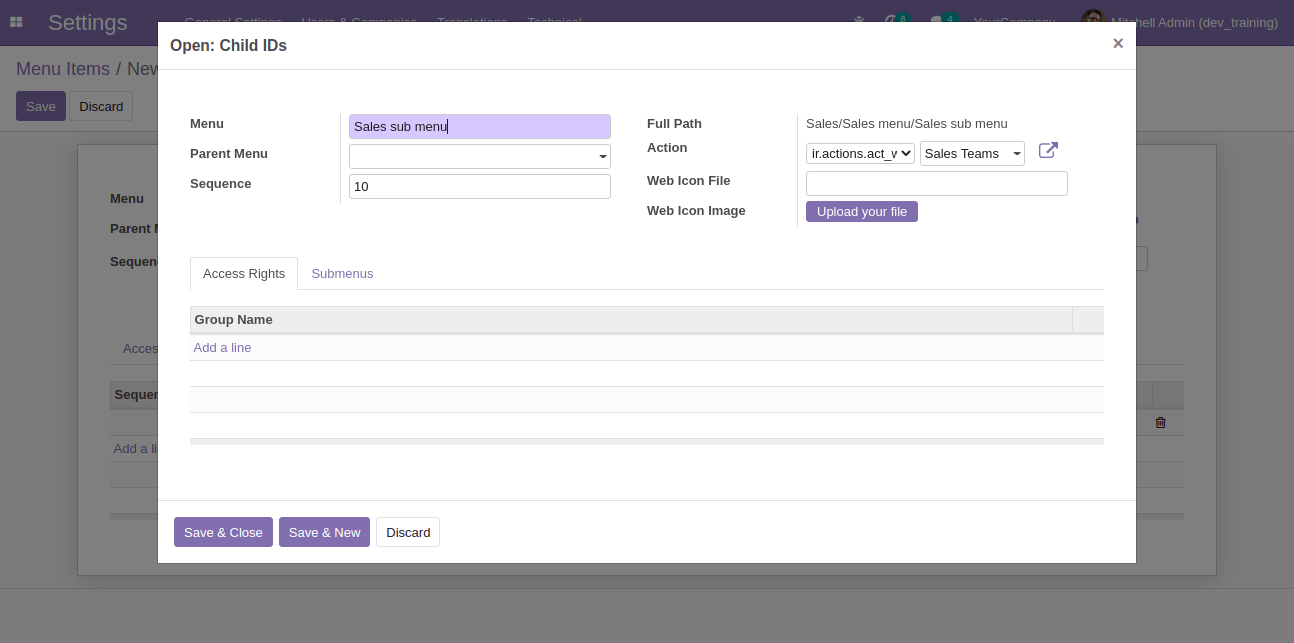 menu-submenu-and-action-in-odoo-cybrosys