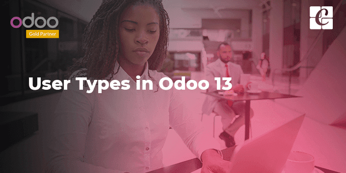 user-types-in-odoo-13.png