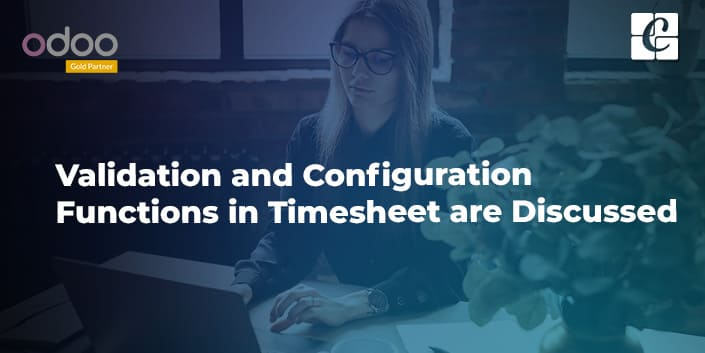 validation-and-configuration-functions-in-timesheet-are-discussed.jpg