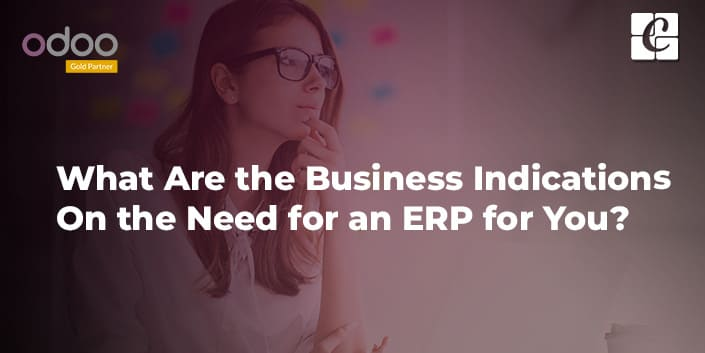 what-are-the-business-indications-on-the-need-for-an-erp-for-you.jpg