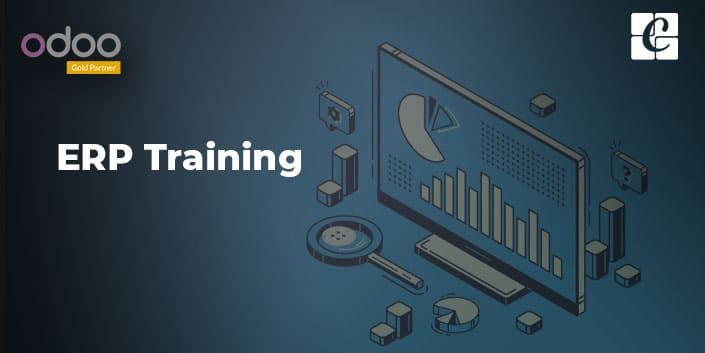 what-is-erp-training.jpg