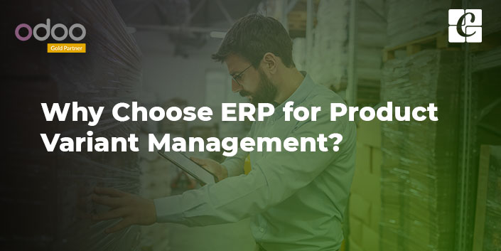 why-choose-erp-for-product-variant-management.jpg
