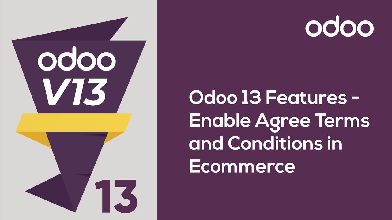 Enable Agree Terms and Conditions in Ecommerce